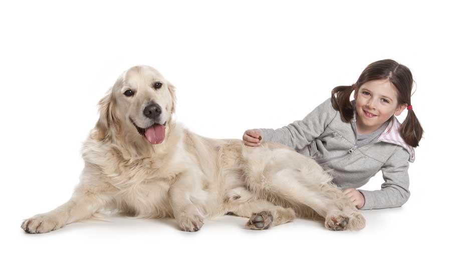 Cani e bambini: un'esperienza possibile?