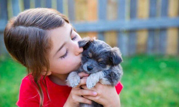 Regalare un cucciolo ai bambini? Sì, se è una scelta consapevole