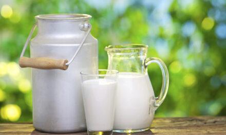 Il latte fa bene: lo conferma la scienza