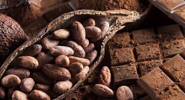 Il cioccolato fa bene ai bambini?