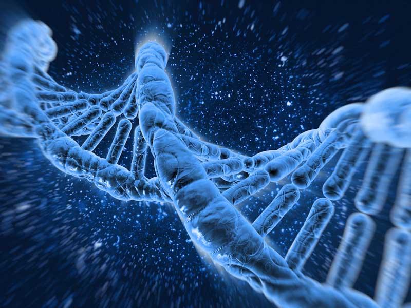 Anemia  Mediterranea la più frequente malattia ereditaria