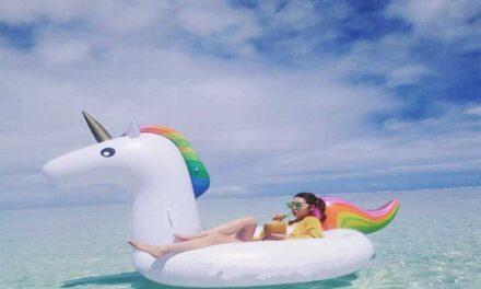 Un'estate a dorso di unicorno