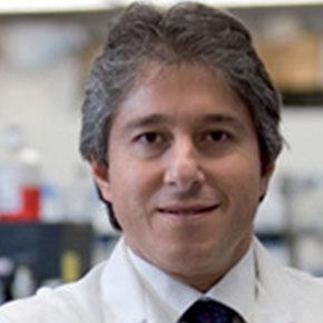 Prof. Antonio Giordano